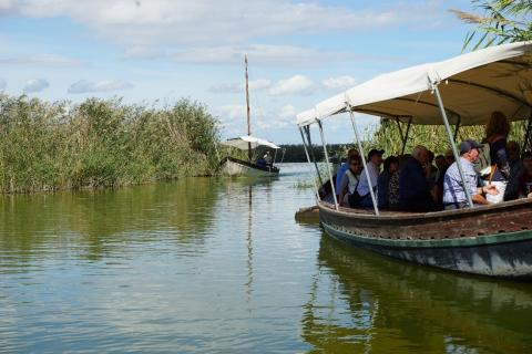 picture of the Albufera Wetland